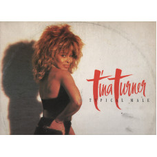 "TINA TURNER disco Mix 12"" 45 giri 1986 TYPICAL MALE Remix"